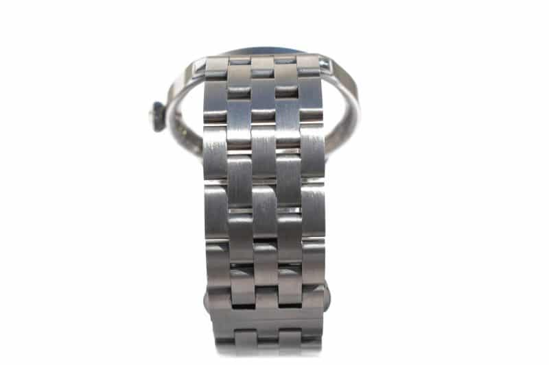 Steel watch case and strap side view